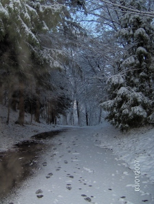 Winter's Path