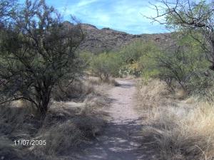 Superstition Mountains, Arizona,  ©Ruth Jewell, November 2005