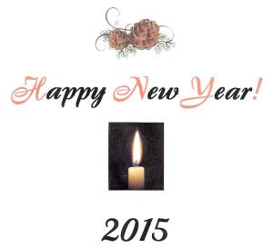 Happy New Year 2015 A